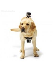 ריתמה לגב ולחזה לכלב למצלמת אקסטרים GoPro / SJCAM *במלאי מיידי*