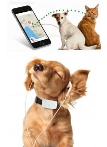 קולר לכלב עם מערכת מעקב לווינית בטכנולוגיית GPS TKSTAR TK909 *במלאי מיידי*